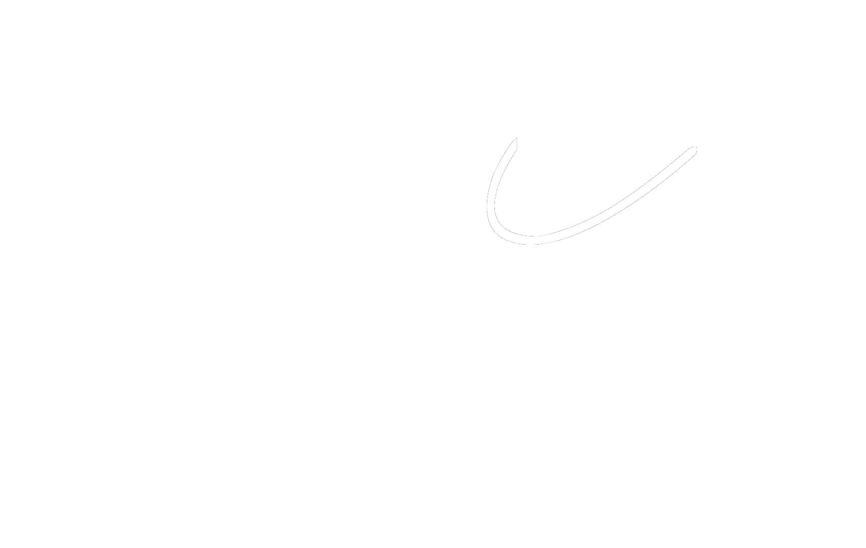 Logo Web Blanco español